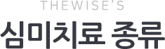 THE WISE'S 심미치료 종류